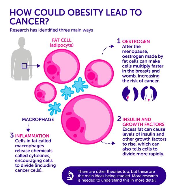 obesity-cause-cancer_v02-01
